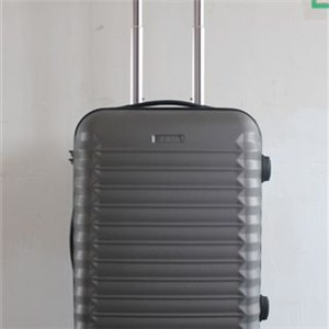 20 Inch Abs Luggage