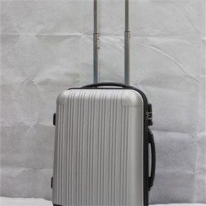 Abs Spinner Luggage