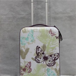Printed Abs Trolley Case
