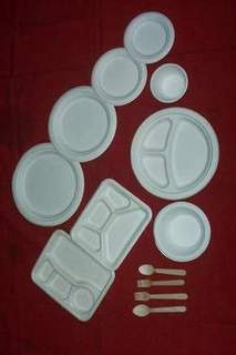 Disposable Pulp moulded plates, bowls, trays etc