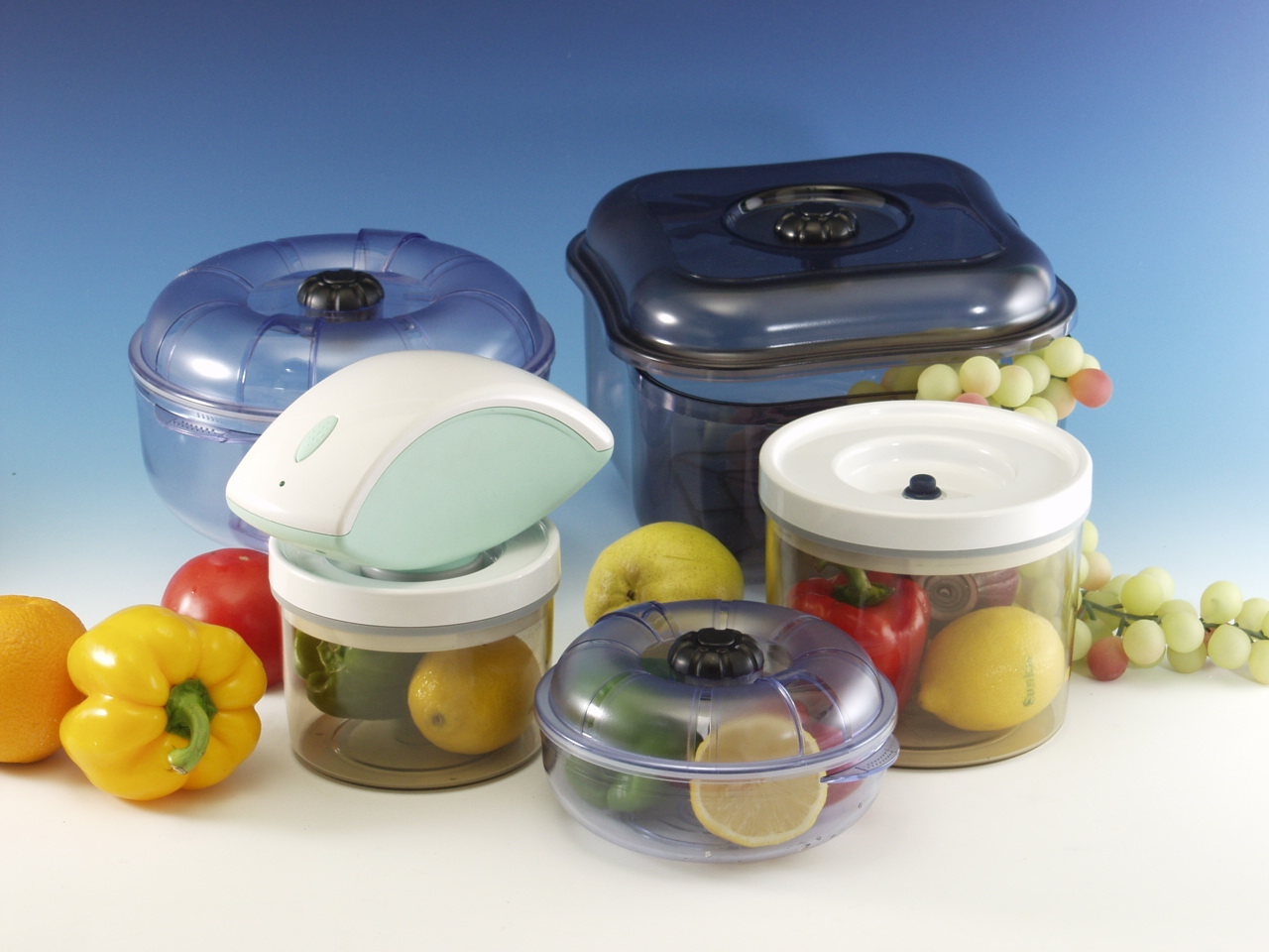 vacuum sealer and canister